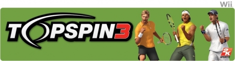 Banner Top Spin 3