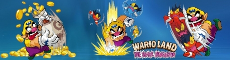 Banner Wario Land The Shake Dimension