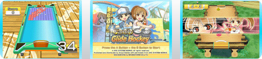 Banner Family Glide Hockey