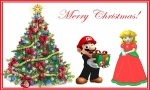 Afbeelding voor Onvergetelijke kerst?