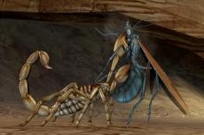 Review Deadly Creatures: De chapters waarin je de schorpioen speelt zitten vol met actie en gevechten.