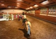 Review My Horse & Me: Een wedstrijd kan in een hal plaatsvinden, waarin jij en je paard de ruimte krijgen om te rijden en te springen.