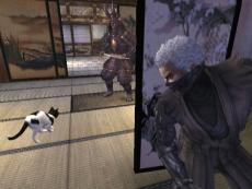 Review Tenchu: Shadow Assassins: Een simpele kat die moet vechten tegen een zwaar bepantserde Samoerai-krijger?