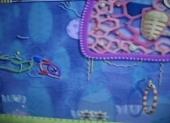Dolfijn - daar heb je flipper... eeeh Kirby... hij is geweldig