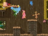 Deze game is een zelfde soort game als de <a href = http://www.mariowii.nl/wii_spel_info.php?Nintendo=New_Super_Mario_Bros_Wii>Super Mario Bros</a> 2d game reeks, maar dan toch net een tikje anders. (vrouwelijke variant van super Mario bros reeks)