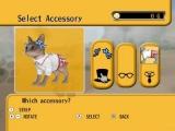 Bepaal zelf hoe je kat eruit ziet met bijvoorbeeld hoeden, een bril of een stropdas!