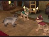 Praat met vele andere katten om missies te spelen!