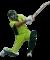 Afbeelding voor  Cricket Challenge