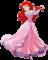 Afbeelding voor  Disney Princess De Betoverende Reis