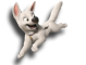Afbeelding voor Bolt