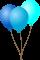 Afbeelding voor Doras Grote Verjaardag Avontuur