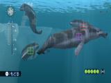Maak schitterende foto's van de dieren onderwater.
