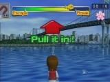 Door de Wii mote met de juiste snelheid naar achter te halen krijg je de vissen uit het water.
