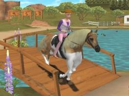 Leer op je paard te rijden!
