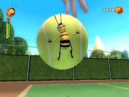 Het leven van een bij gaat niet over rozen, en al helemaal niet over tennisballen.