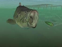 We staan op het punt kanibalisme waar te nemen, een misdaad waar opvissing op staat.