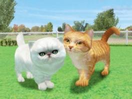 Katten zijn er in alle soorten en maten. Deze zijn van de kwaadaardige soort...