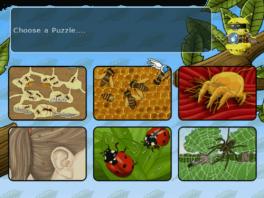 Wil jij iets leren over bijen, lieveheersbeestjes of misschien wel spinnen?