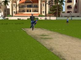 Cricket Challenge plaatjes