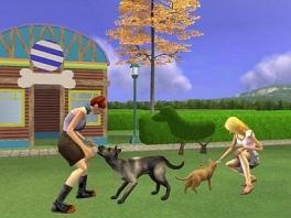 Je kan natuurlijk ook lekker met je huisdieren spelen!