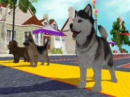 Je kunt met allerlei soorten honden spelen. Lief zijn ze, hè?