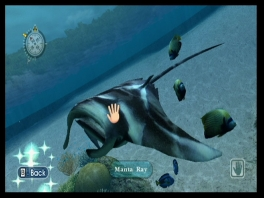 Aai de vissen met je Wii Mote