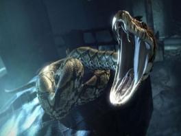 Voor het eerst is Nigini, de slang van Lord Voldemort, te zien in een <a href = https://www.mariowii.nl/wii_zoeken.php?search=Harry%20Potter>Harry Potter</a> spel!