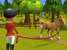 Ook de pony's moeten goed verzorgd worden.