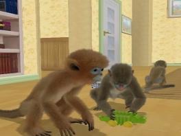 Kies uit heel veel verschillende aapjes en verzorg en speel met ze.