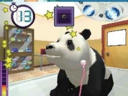 Ah! Is die panda niet lief?