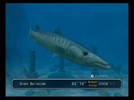 Ook leuk is dat je informatie krijgt over de vissen.