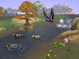 Spitter, spatter spater, zwemmen in het water!