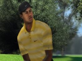 Speel als Tiger Woods, de legendarische golfer!