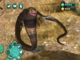 Durf jij deze slang te verzorgen?