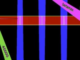 Er zijn 15 verschillende levels in lilt line.